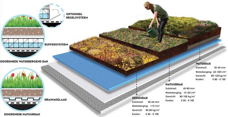 5 miljoen EU subsidie blauw groene daken